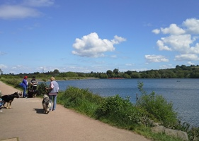 Country Park June 2015