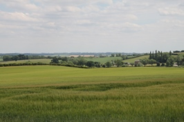 Landscape countryside 260.jpg